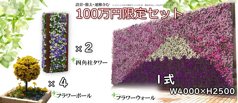 花のイベントに最適なレンタルパック